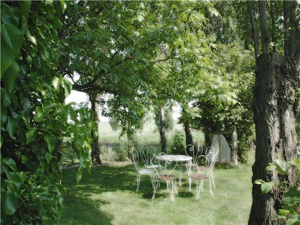 and garden